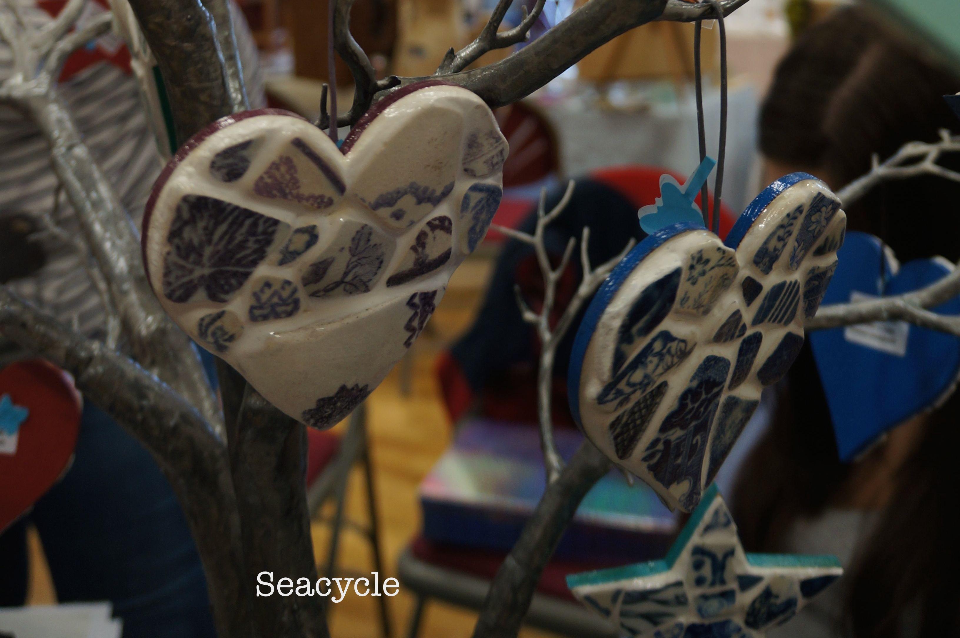 seacyle close-up