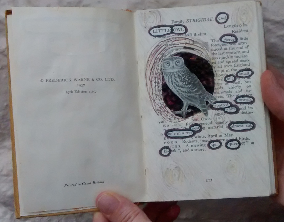 Altered Book – The OwlStory