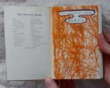 altered book - nest