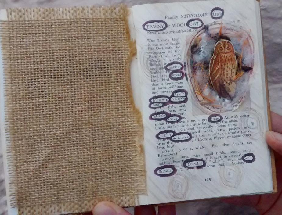 altered book tawny owl